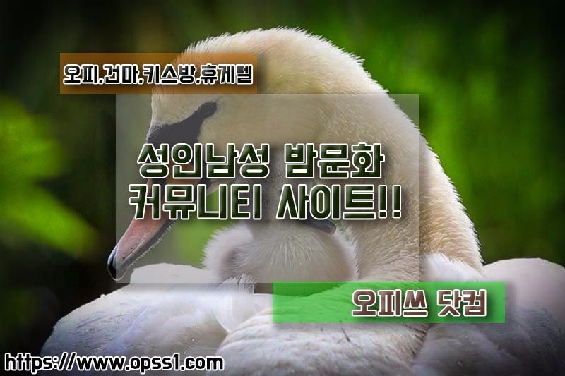 [신논현오피]오피쓰 (@sinnonhyeonopss) Cover Image