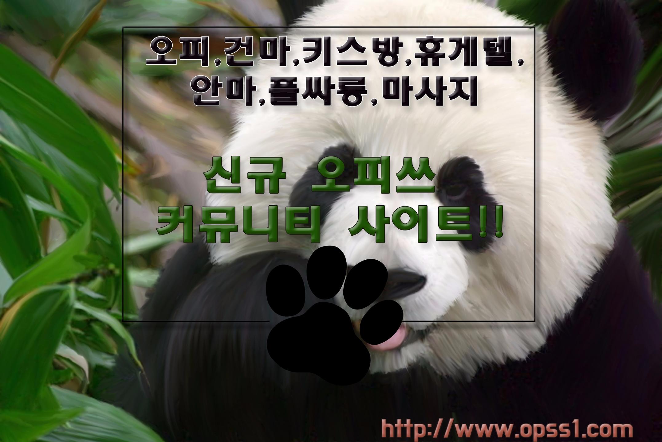 「부천오피」오피쓰 (@bucheonopss) Cover Image