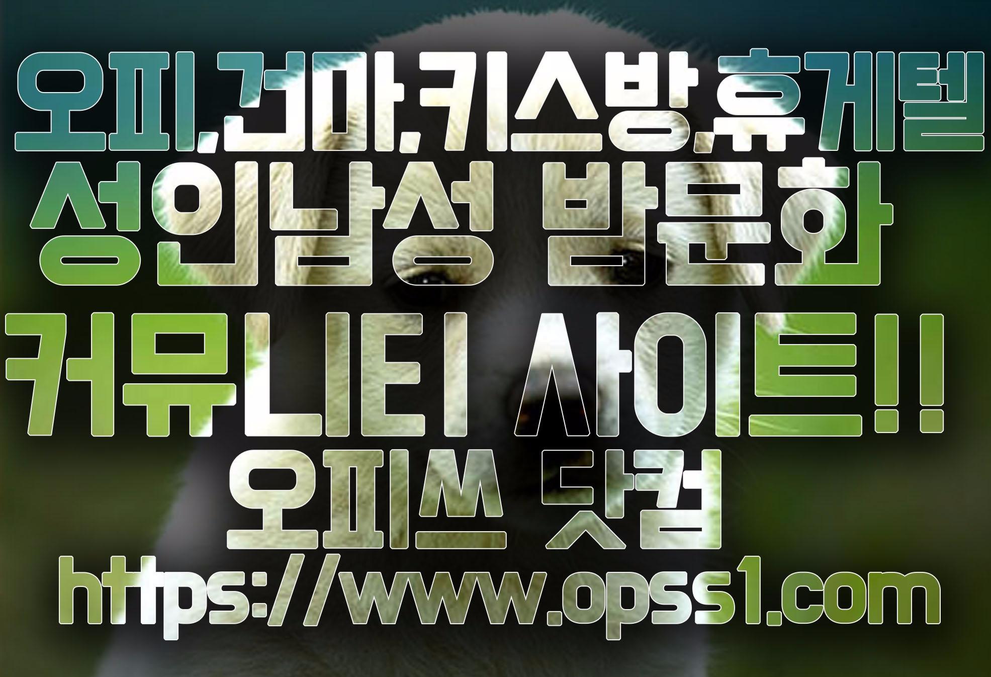[김포오피][오피쓰] (@gimpoopss) Cover Image