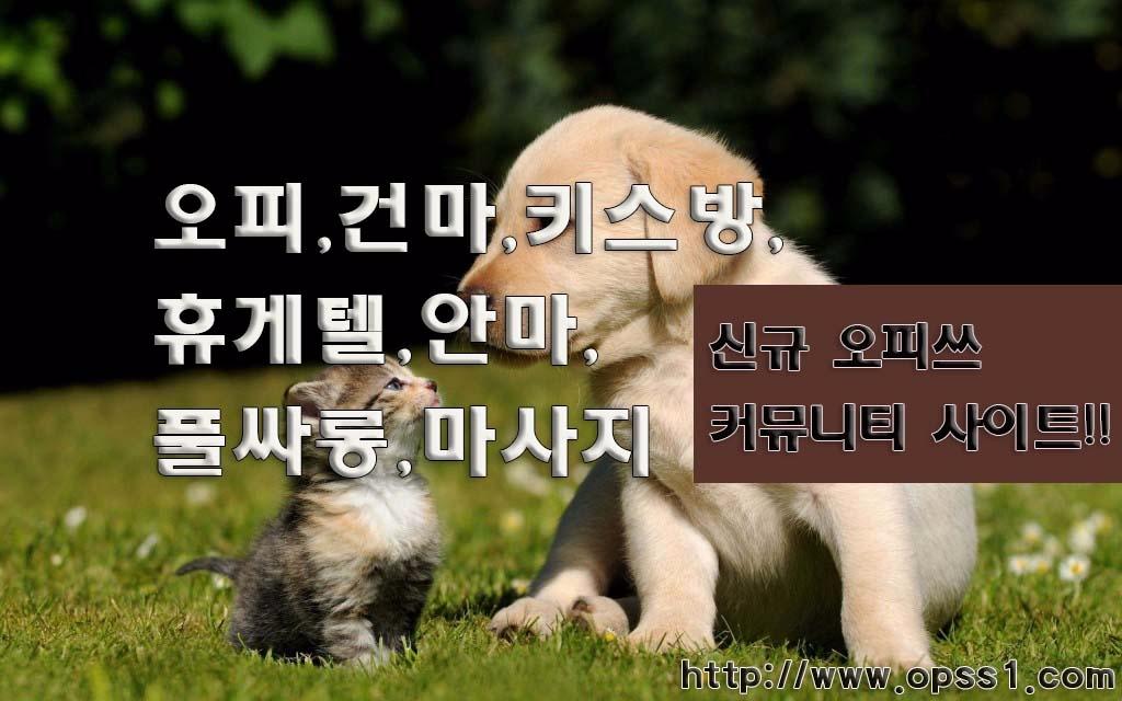 [강동오피][오피쓰] (@gangdongopss) Cover Image