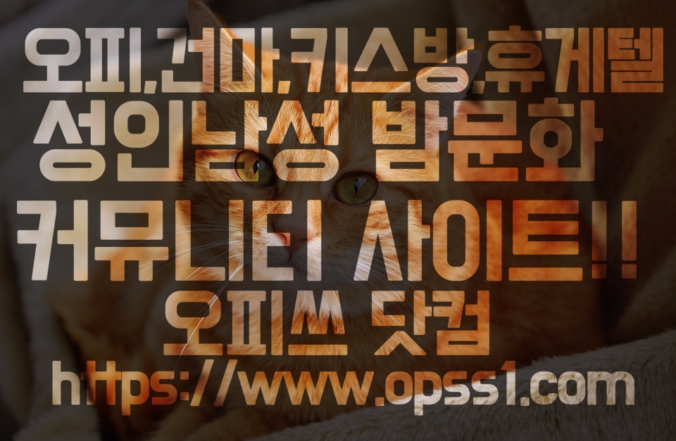 「신부동오피」「오피쓰」 (@shinbudongopss) Cover Image