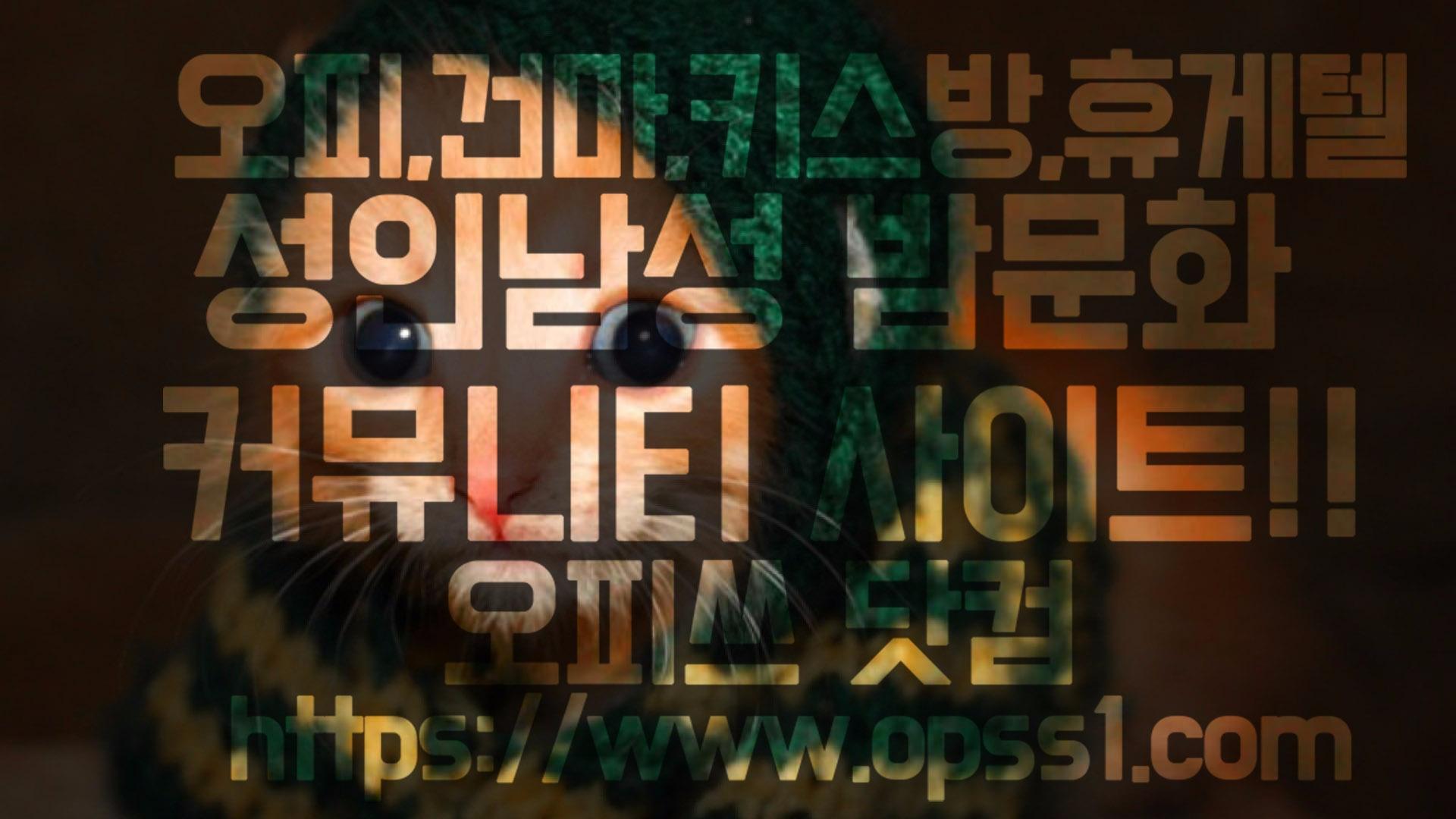 [수유건마]오피쓰 (@suyugunma) Cover Image