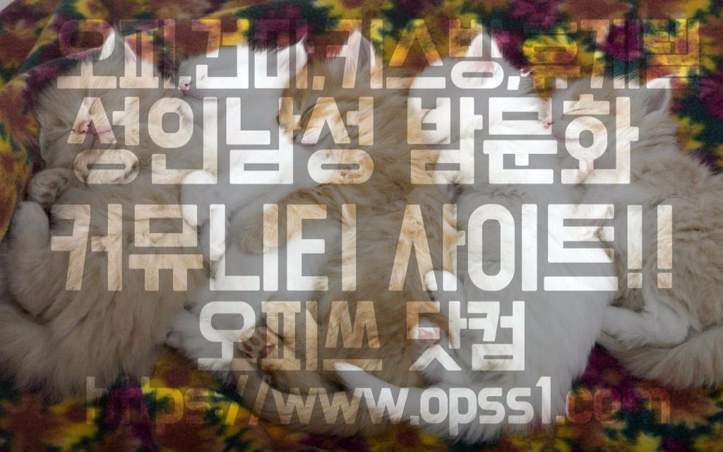 「신촌건마」「오피쓰」 (@sinchongunma) Cover Image