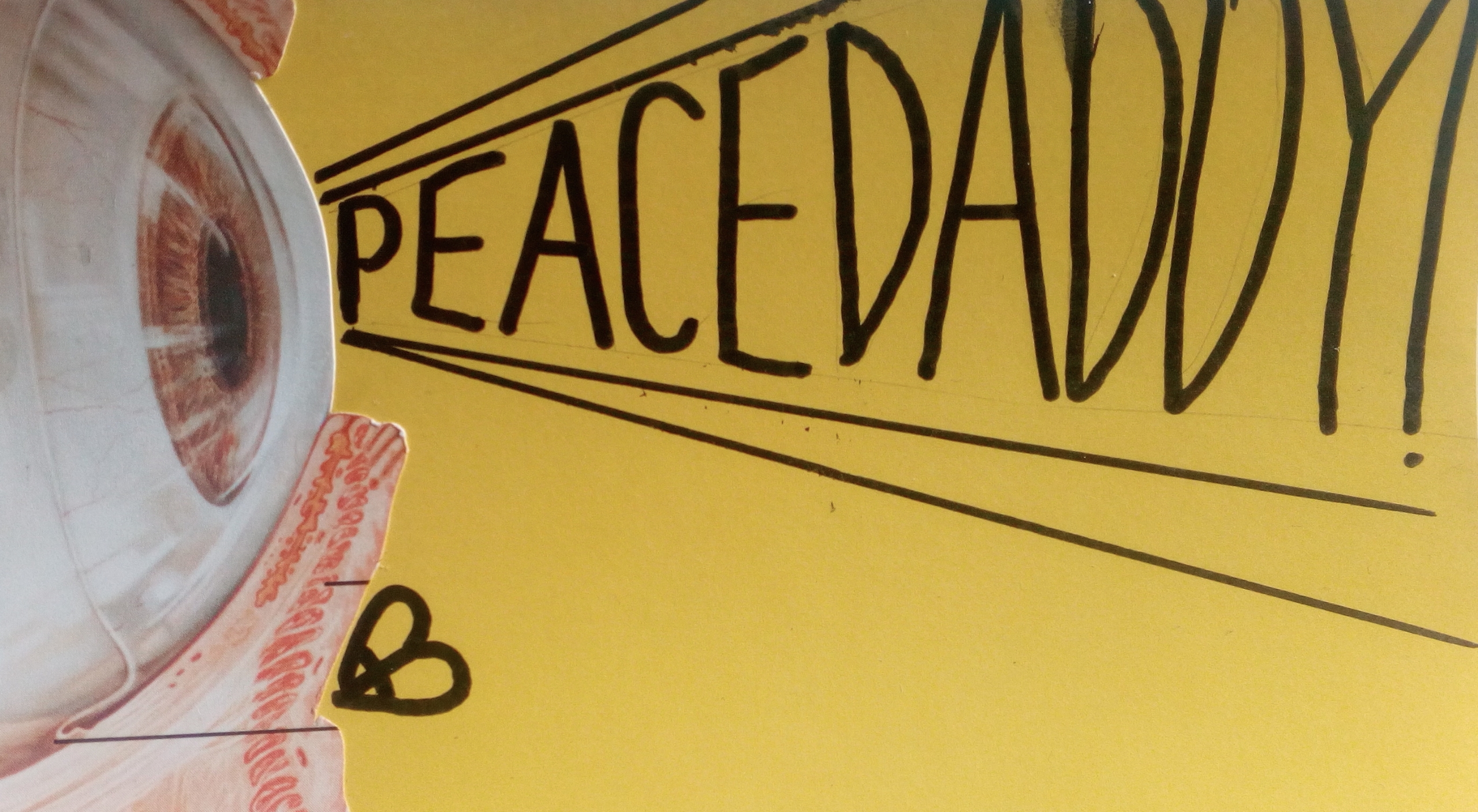 peacedaddy (@peacedaddy) Cover Image