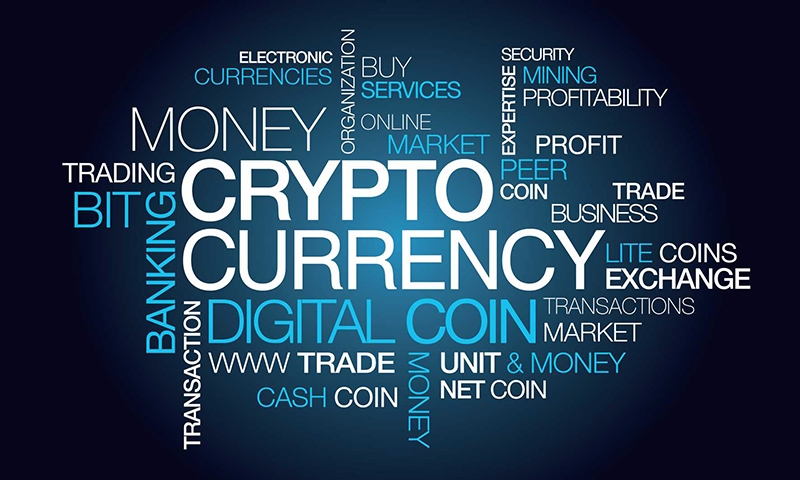Crypto Consumer (@cryptoconsumer) Cover Image