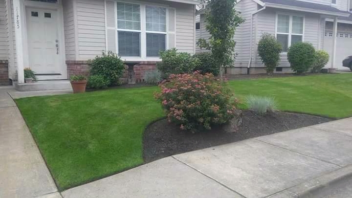 S & M Landscape Maintenance LLC (@snmlandscapemaintenancellc) Cover Image