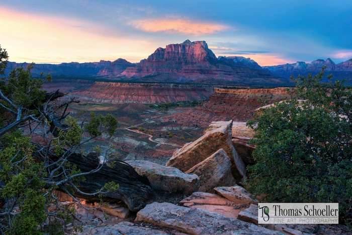 Thomas Schoeller Photography (@tsphotography) Cover Image
