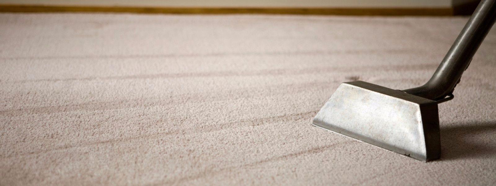 Clean Carpets Melbourne (@cleancarpetsmelbourne) Cover Image