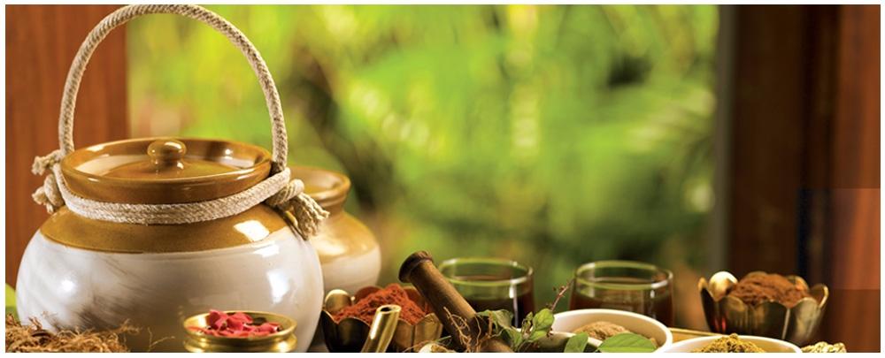 Dharma Ayurveda (@dharmaayurveda) Cover Image