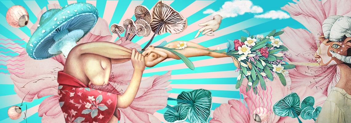 Alice Lin (@alice_lin) Cover Image