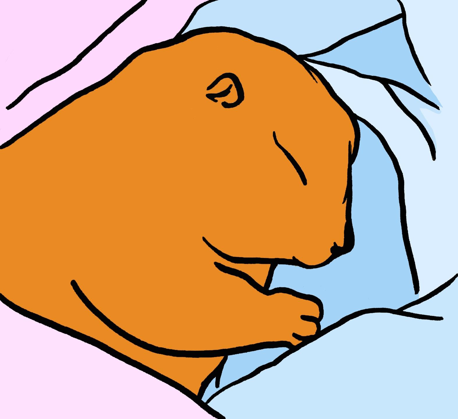 EAT SLEEP (@_eatsleep_) Cover Image