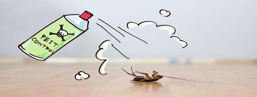 Gold Coast Pest Control Company (@gcpestcontrolco) Cover Image