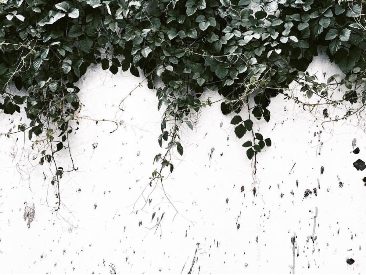 Jem (@juthamatbyjem) Cover Image
