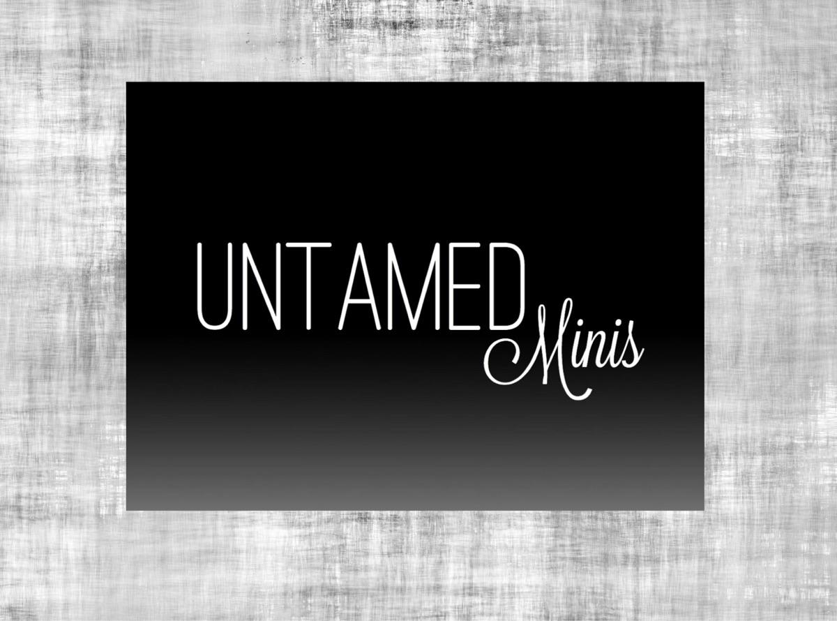 Untamed Minis  (@untamedminis) Cover Image
