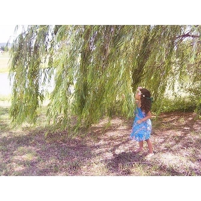 Ilara Phoenix  (@growinguparmy) Cover Image