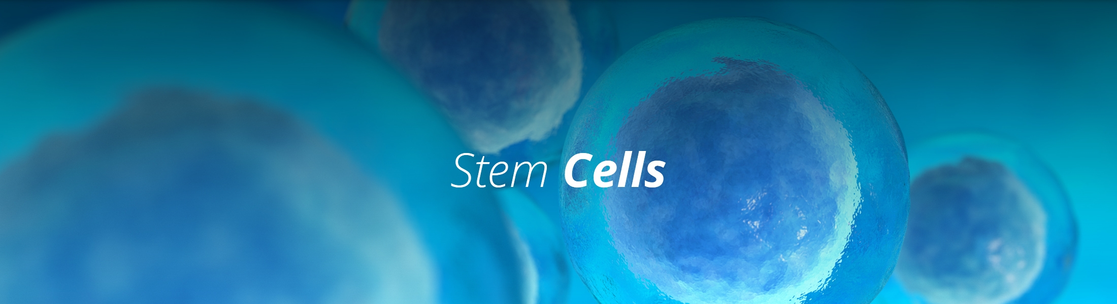 The Stem Cell Institute of Texas (@stemcellinstituteoftx) Cover Image