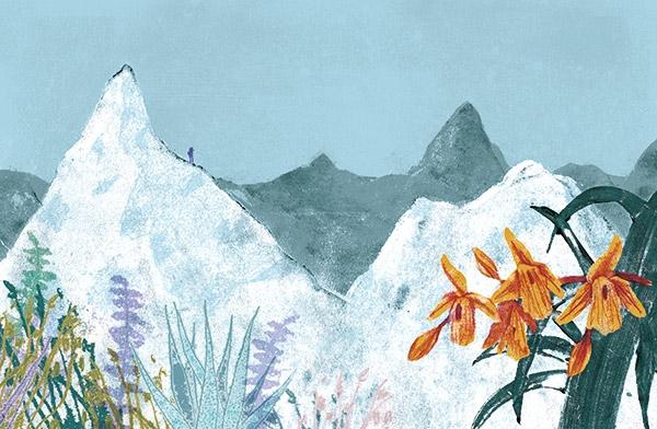 Sally Walker (@sallywalkerillustration) Cover Image