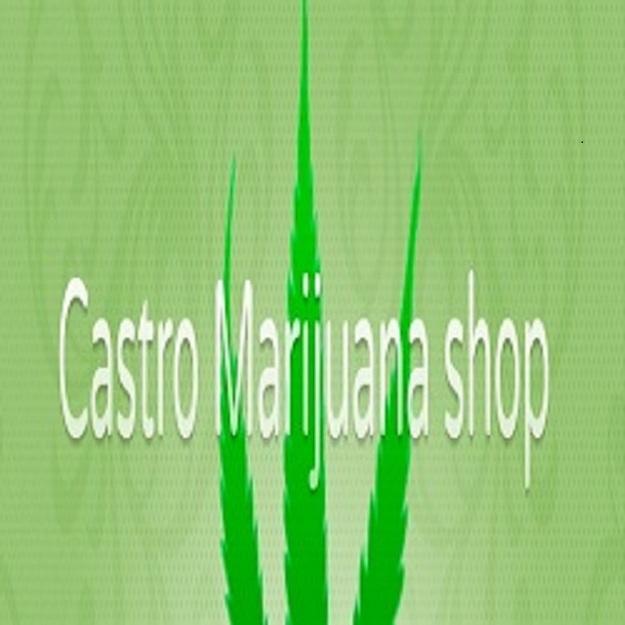 Castro Marijuana (@castromarijuana) Cover Image