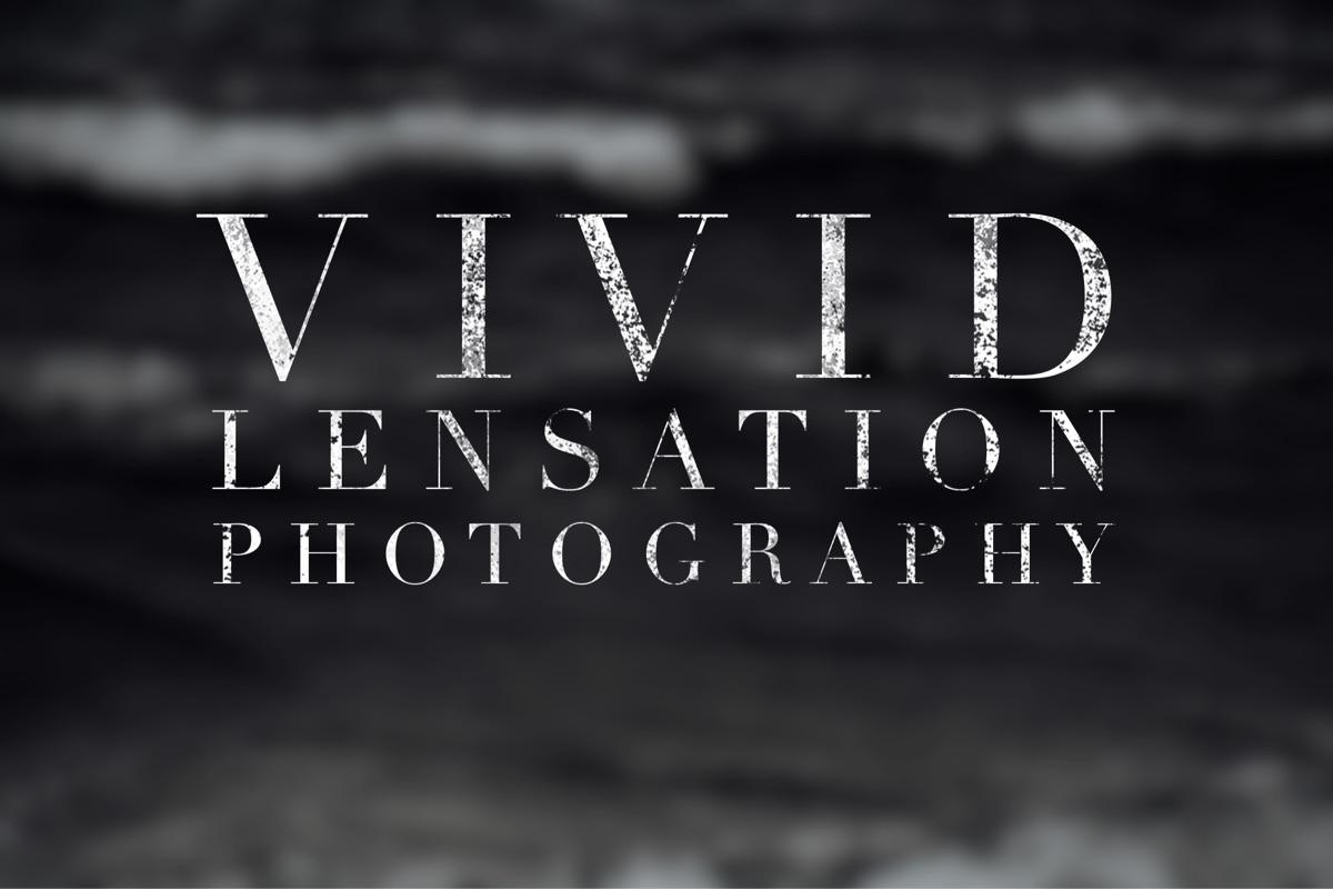 V L P (@vividlensationphotos) Cover Image