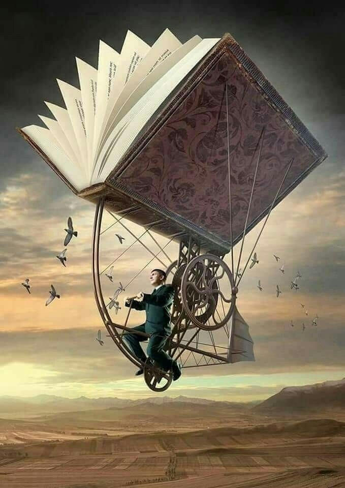 @alaagharezeddeen Cover Image