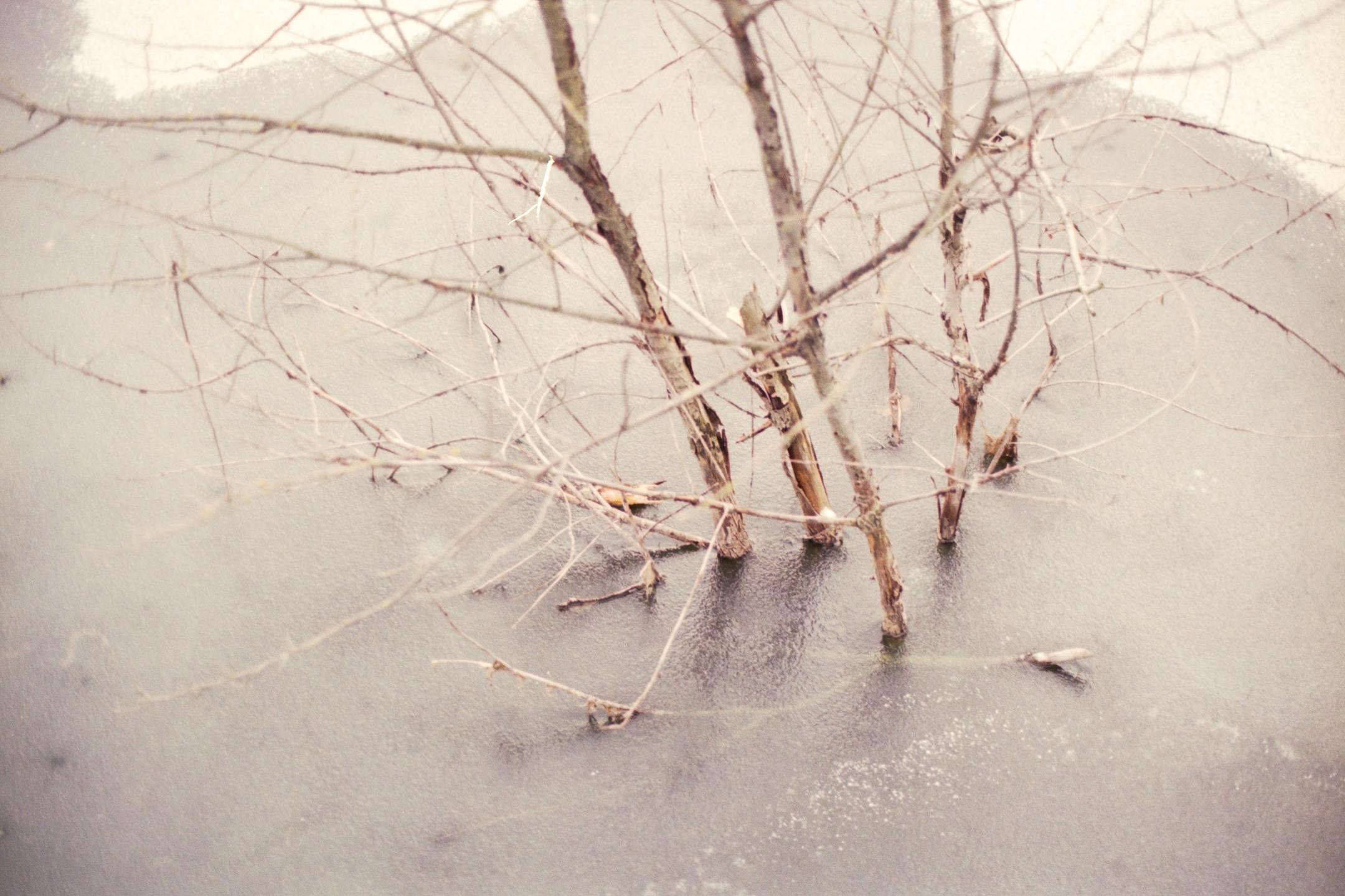 Daniel Barth Photography (@lightasylum) Cover Image
