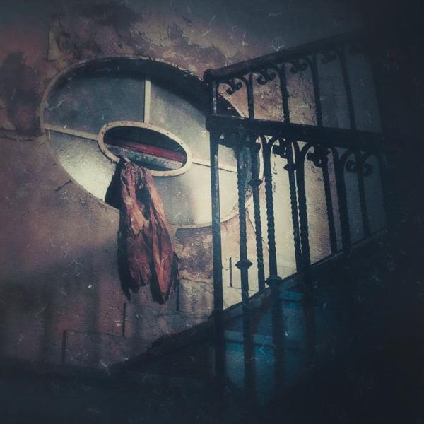 Federica Corbelli (@lubaluft) Cover Image