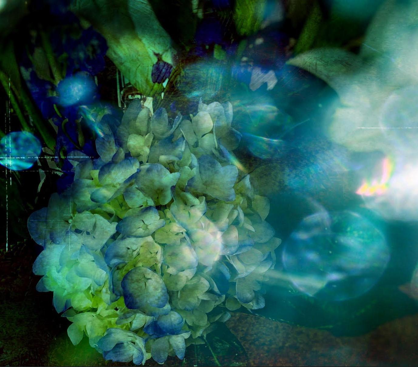 (@liquid_turquoise) Cover Image