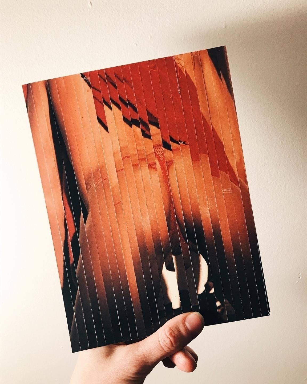 Mo (@mo_mo_bologna) Cover Image