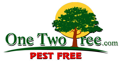 One Two Tree Inc. (@onetwotreepestcontrol) Cover Image