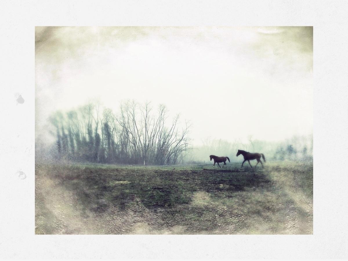 Cristina Rossi (@cristinarossi) Cover Image