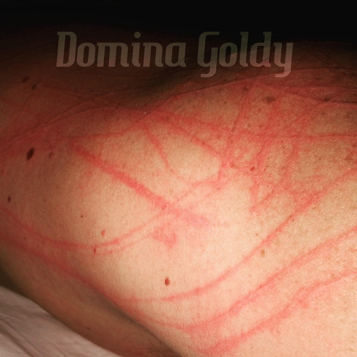 Domina Goldy (@dominagoldy) Cover Image