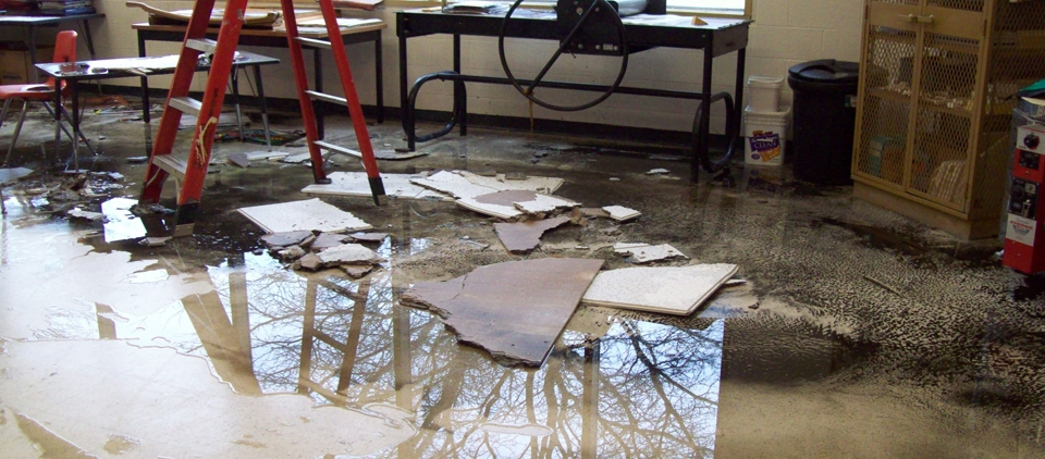 Local Water Damage Services (@localwaterdamage) Cover Image