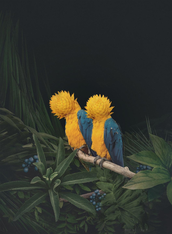 Dawid Planeta (@dawidplaneta) Cover Image