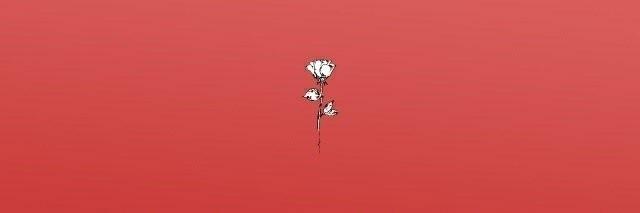 zalu (@yoonminn) Cover Image