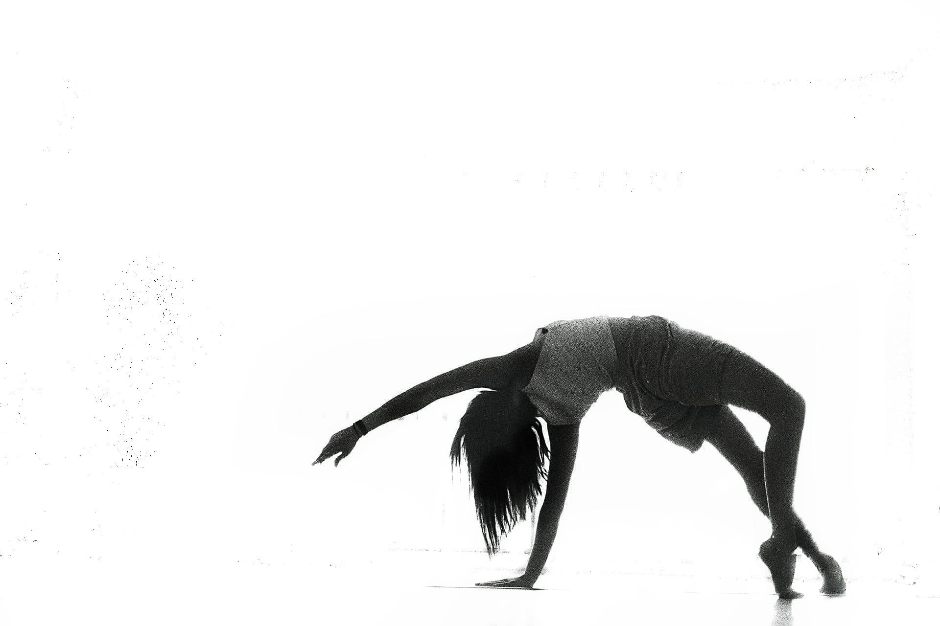 sileia (@sileia) Cover Image