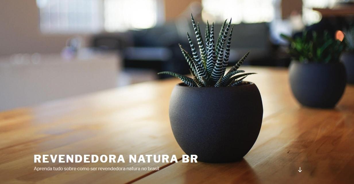Revendedora Natura (@revendedoranatura) Cover Image
