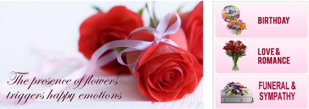 Send Flowers Los Angeles CA - 24x7 (@24x7sendflowerslosangelesca) Cover Image
