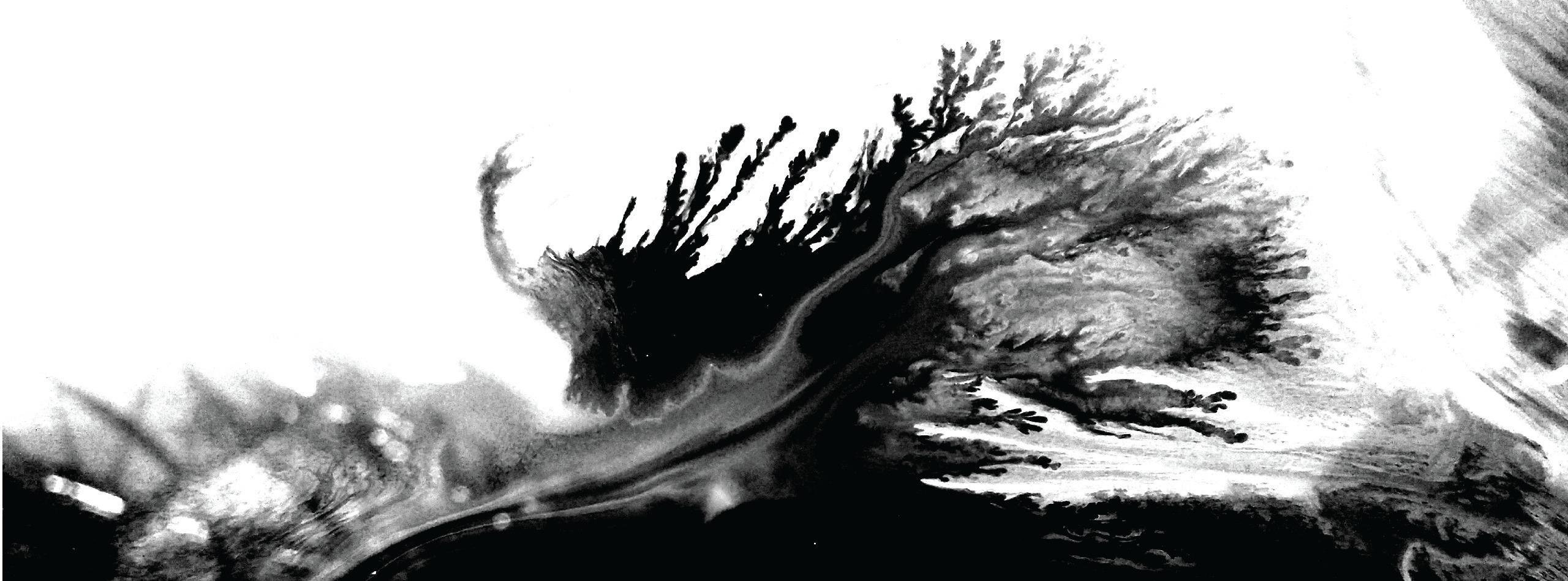 Neto Studio (@netostudio) Cover Image