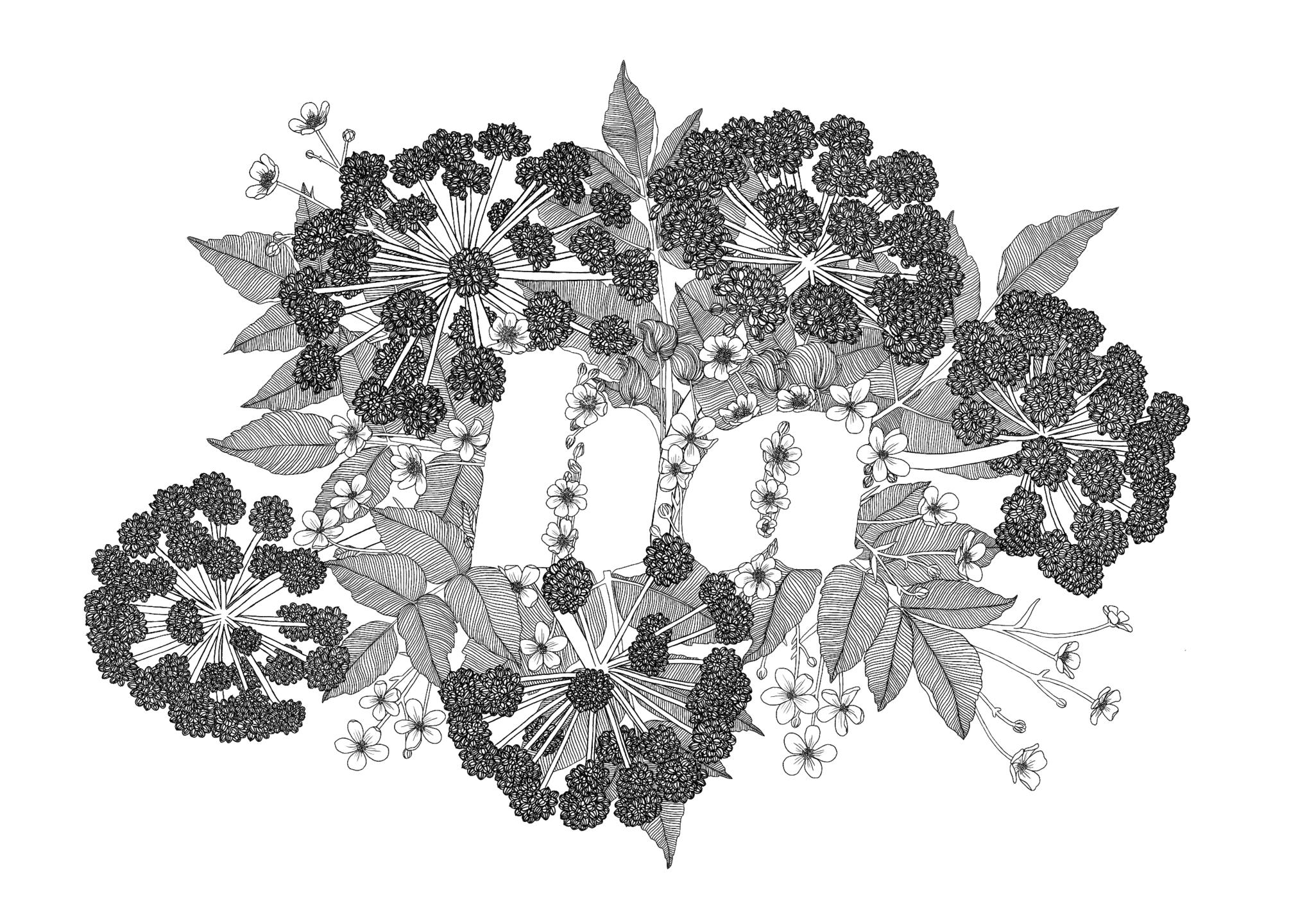 Sóla Eva (@solaeva) Cover Image