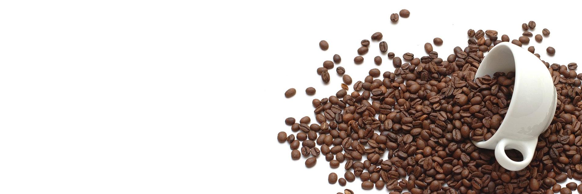 Cafea verde - Cafea HORE (@cafeaverdecafeahoreca) Cover Image