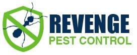 Rat Removal (@ratremoval) Cover Image