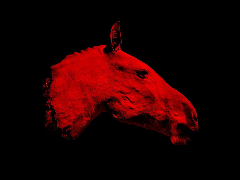 David Payr (@davidpayr) Cover Image