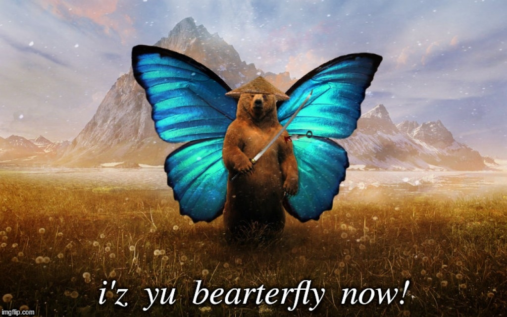 Butterfly Bear (@musiciandan) Cover Image