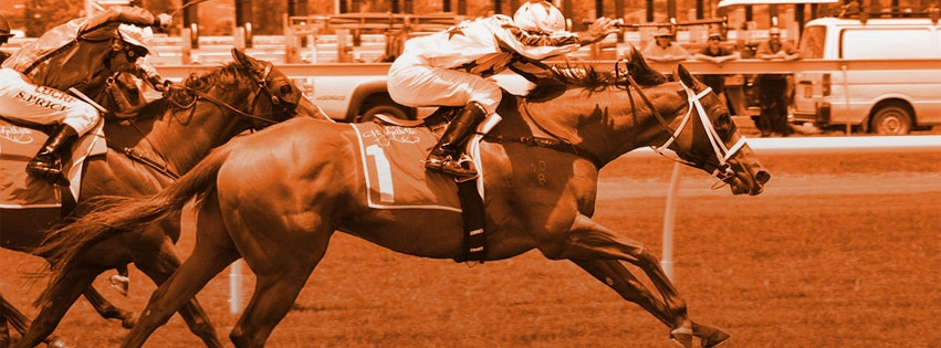 Cartmel Steeplechases (@cartmelsteeplechases) Cover Image