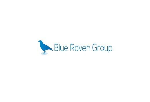 Blue Raven Group  (@blueravengroup) Cover Image