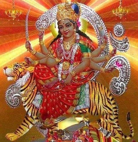 PurvaBha (@purvabhatt) Cover Image
