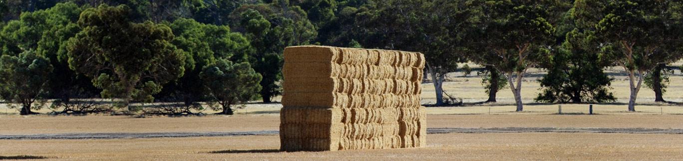 Silage Wrap Australia (@baletwine) Cover Image