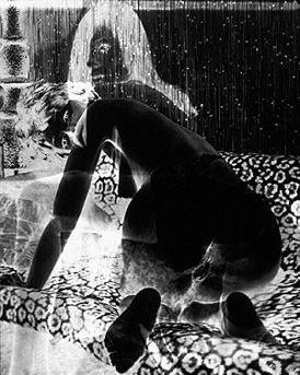 Luis Fonseca (@luzinterior) Cover Image