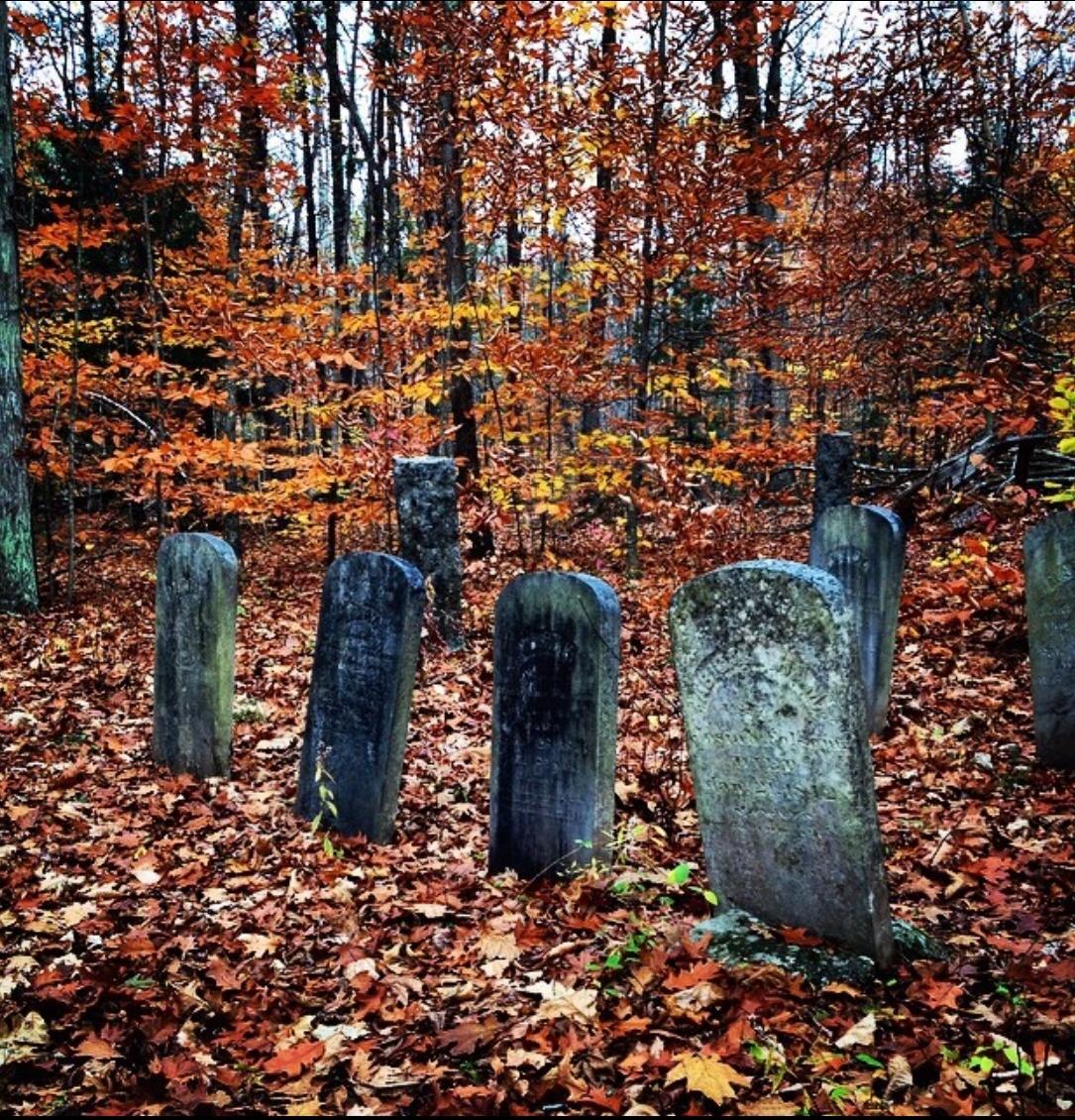 halloween creep (@halloweencreep) Cover Image