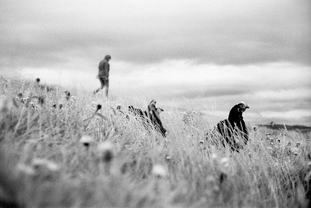 Marcel Pommer (@marcel-pommer-photography) Cover Image